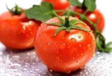 cà chua giảm cân