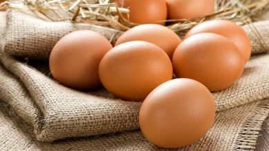 giảm cân bằng trứng